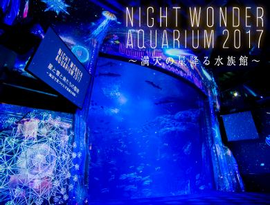 NIGHT WONDER AQUARIUM2017